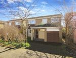 Thumbnail to rent in Dene Road, Wylam, Northumberland