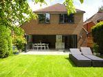 Thumbnail to rent in Grosvenor Road, Chobham, Woking