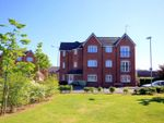 Thumbnail for sale in Fieldhouse Way, Stafford