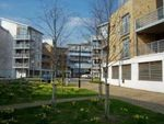 Thumbnail to rent in Kingfisher Meadow, Maidstone