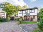 Thumbnail for sale in Horndean Close, Crawley