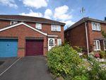 Thumbnail to rent in Washington Close, Paignton, Devon
