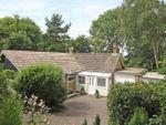 Thumbnail for sale in Herbert Road, Woodfalls, Salisbury