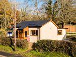 Thumbnail for sale in Crossgates, Llandrindod Wells
