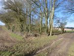 Thumbnail for sale in Tinkers Lane, Wivelrod, Alton, Hampshire