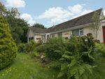 Thumbnail for sale in Nant Y Fedwen, Pennant, Llanbrynmair, Powys