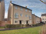 Thumbnail to rent in Serotine Crescent, Trowbridge