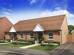 "Thumbnail to rent in ""Burleigh"" at Station Road, Langford, Biggleswade"