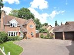 Thumbnail to rent in Great Notley, Braintree, Essex