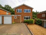 Thumbnail for sale in Bayfield Avenue, Frimley, Camberley, Surrey