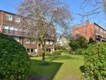 Thumbnail for sale in Broom Close, Teddington