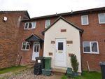 Thumbnail to rent in Beecham Berry, Basingstoke, Hampshire