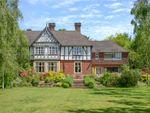 Thumbnail for sale in Hazel Grove, Hindhead, Surrey