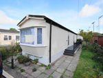 Thumbnail to rent in Church Farm Close, Dibden, Southampton