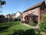Thumbnail for sale in Pollards Green, Springfield, Chelmsford