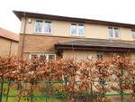 Thumbnail to rent in Locomotion Lane, Darlington, Durham
