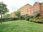 Thumbnail to rent in Ascot Court, Aldershot, Hampshire