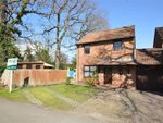 Thumbnail for sale in Mayfield Road, Walton-On-Thames, Surrey