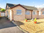 Thumbnail for sale in Orchid Close, Taunton