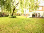 Thumbnail to rent in Delmar Avenue, Hemel Hempstead