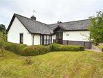 Thumbnail to rent in 1, Bramble Close, Llanllwchaiarn, Newtown, Powys