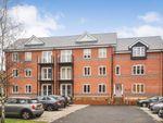 Thumbnail to rent in Sheering Lower Road, Sawbridgeworth