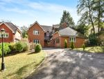 Thumbnail to rent in Vale Wood Drive, Lower Bourne, Farnham, Surrey