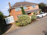 Thumbnail for sale in London Road, Waterlooville