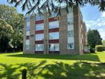 Thumbnail to rent in Warham Road, South Croydon