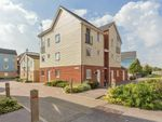 Thumbnail to rent in Bismuth Drive, Sittingbourne