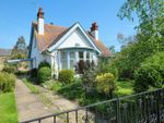 Thumbnail for sale in Argyle Road, Whitstable