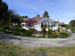 Thumbnail for sale in Bryn Eithin, Tafarn-Y-Gelyn, Llanferres, Denbighshire