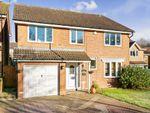 Thumbnail to rent in Dorrel Close, Basingstoke