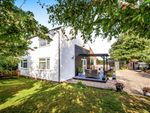 Thumbnail to rent in Hawkersland Cottages, Marden, Hereford