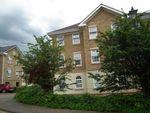 Thumbnail to rent in Scholars Court, Northampton