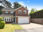 Thumbnail for sale in Cypress Close, Wokingham