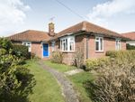 Thumbnail for sale in Harley Shute Road, St. Leonards-On-Sea