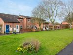 Thumbnail for sale in Sadlers Court, Abingdon