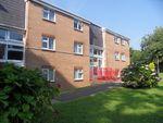 Thumbnail to rent in Llwyn Y Mor, Caswell, Swansea