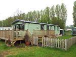 Thumbnail to rent in Kingfisher, Billing Aquadrome