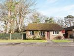 Thumbnail for sale in Spring Gardens, Copthorne, Crawley