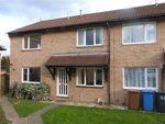 Thumbnail to rent in Lavenham Road, Ipswich