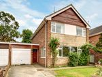 Thumbnail to rent in Sycamore Rise, Newbury