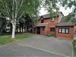 Thumbnail for sale in Rookery Close, Puriton, Bridgwater