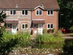 Thumbnail to rent in Ivy Drive, Lightwater