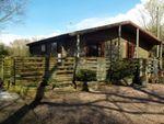 Thumbnail to rent in Whitford Bridge Road, Bromsgrove