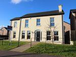 Thumbnail to rent in Marlborough Manor, Carrickfergus