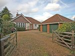 Thumbnail for sale in Gold Hill, Lower Bourne, Farnham, Surrey