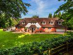 Thumbnail for sale in Swissland Hill, Dormans Park, East Grinstead