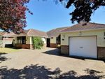 Thumbnail for sale in Central Avenue, Findon Valley, Worthing, West Sussex